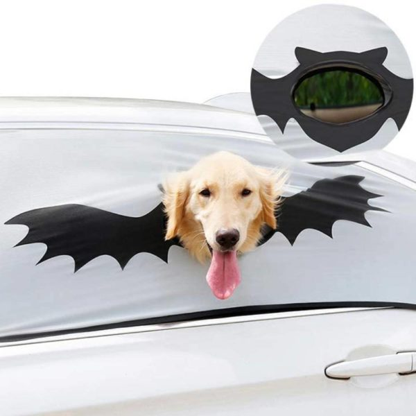 car window safety device for dogs