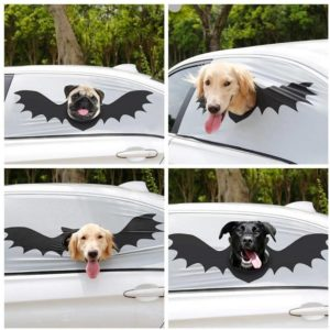 dog head out of vehicle window safety device
